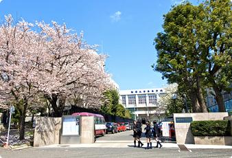 駒澤大学 駒澤大学高等学校   教...